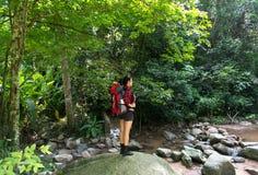 看亚裔妇女的远足者站立在与瀑布的森林足迹和  有背包的女性在远足本质上 库存图片