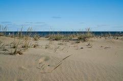 看到通过海滩草的海洋 库存照片