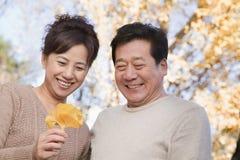 看叶子和微笑在公园的成熟夫妇在秋天 库存照片