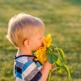 看向日葵的一个岁男婴 图库摄影