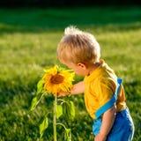 看向日葵的一个岁男婴 库存图片