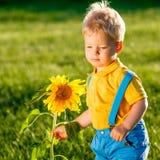 看向日葵的一个岁男婴 免版税图库摄影