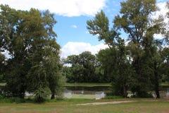 看在与树、河、岸、天空和自然痕迹的自然 免版税库存照片