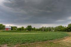看在农田的风雨如磐的天空 免版税库存照片