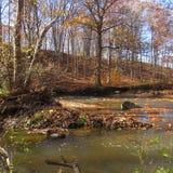 看在小河下 图库摄影