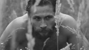 看在干草原草的惊吓的特写镜头有胡子的人 股票录像