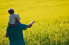 看在油菜籽的父亲和儿子在夏日调遣 免版税库存照片