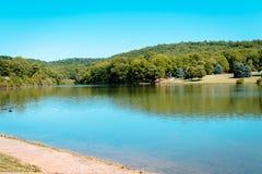 看在湖蓝色云杉的公园,当渔夫等待抓住时 免版税库存照片