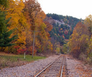 看在秋天的火车轨道下 免版税库存照片