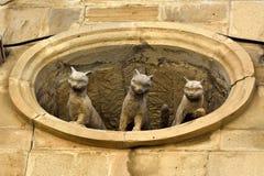 看在老镇处所的窗口外面的三只猫雕塑巴库 库存照片