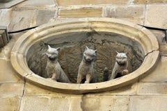 看在老镇处所的窗口外面的三只猫雕塑巴库 库存图片