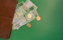看在钱包外面的私房钱 免版税库存图片