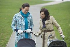 看在婴儿推车的母亲公园 免版税库存照片