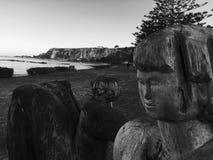 看在Kaikoura海滩的木艺术品 免版税库存图片