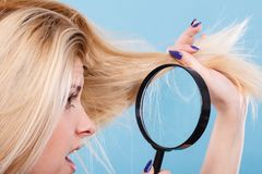 看头发的妇女通过放大镜 库存图片