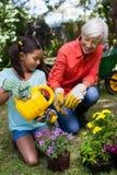 看女孩浇灌的花的微笑的资深妇女 免版税库存图片