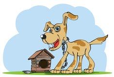 看家狗在他的房子附近站立 免版税库存照片