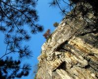 看对岩石在原野 图库摄影