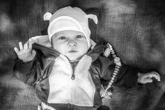 看对照相机的小孩婴孩户外 库存照片