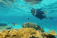 看彼此的人和小鱼在海下 库存照片