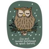 看板卡快活圣诞节的问候 新年假日庆祝 动画片样式 手拉的猫头鹰坐绿色杉木分支 向量 库存照片