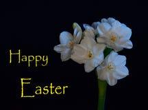 看板卡愉快的复活节 免版税库存图片