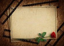 看板卡节假日玫瑰色葡萄酒 免版税库存图片