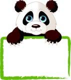 看板卡逗人喜爱的熊猫 库存图片