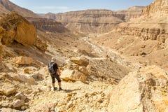 看沙漠峡谷山的游人使看法环境美化 免版税库存图片