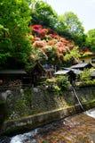 看法五颜六色开花开花在小山,绿色树,地方房子,并且河小河在晴天在Kurokawa onsen镇 免版税库存照片