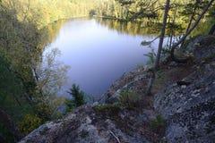 看法从上面在森林湖 免版税库存图片