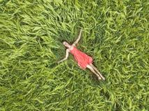 看法从上面放置与在绿色麦田的闭合的眼睛的红色礼服的年轻可爱的亭亭玉立的妇女 库存照片