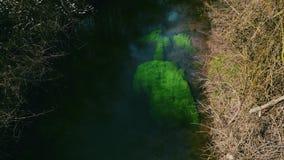 看法从上面绿色杂草在净水河 影视素材