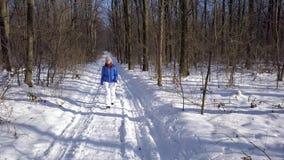 看法从高度到温暖的衣裳的妇女沿在美好的冬天积雪的风景中的一条道路漫步 结算 影视素材