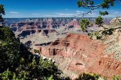 看法到深渊里,大峡谷国家公园 库存图片
