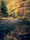 看法到秋天有被弄脏的波浪,新鲜的绿色生苔石头和冰砾的山河里在河岸 免版税库存照片