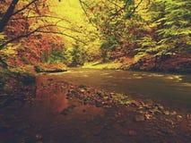 看法到秋天有被弄脏的波浪,新鲜的绿色生苔石头和冰砾的山河里在河岸 库存图片