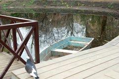 看法向池塘 免版税库存照片