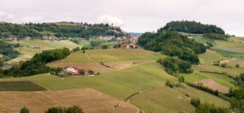 看法向蒙福尔泰达尔巴 风景Langhe葡萄园 在巴罗洛,山麓,意大利,联合国科教文组织遗产附近的葡萄栽培 图库摄影