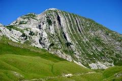 看法在国家公园杜米托尔国家公园,黑山 免版税库存图片