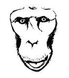看法大猩猩抽象0 库存照片