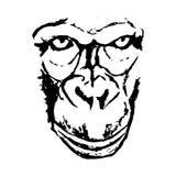 看法大猩猩抽象 库存图片