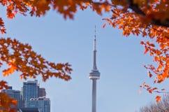 看法秋季在城市 免版税图库摄影