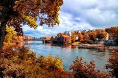 看法通过叶子向Nidelva河,特隆赫姆城市,挪威 库存照片