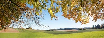 看法通过对农村风景的秋季分支与的领域 免版税图库摄影
