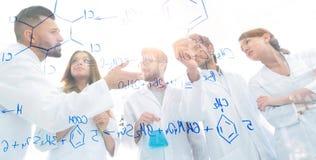 看法通过透明委员会 一个小组科学家分析信息 免版税库存图片