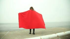 看海的红色毯子的沉思妇女 股票视频