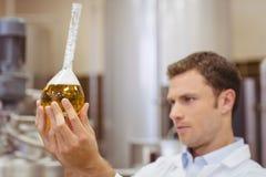 看烧杯用啤酒的被聚焦的科学家 库存照片