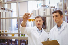 看烧杯的被聚焦的科学家队 免版税库存图片