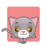 看玩具老鼠的逗人喜爱的灰色小猫 图库摄影